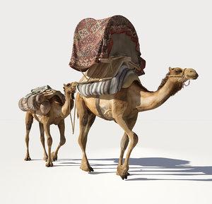 3D camel caravan model