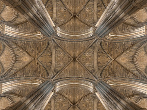 cathedral vault 3D