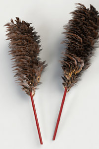 3D taiwan feather duster