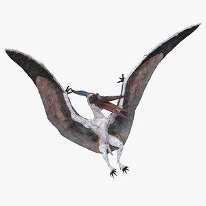 pterosaur pteranodon white landing 3D model