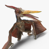 pteranodon standing pose fur 3D
