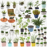 Indoor Plants and Herbs Collection - 53 Products