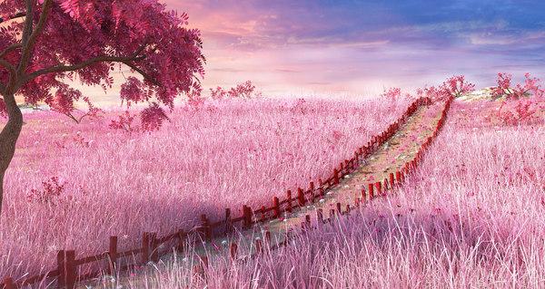 meadow japan japanese 3D model