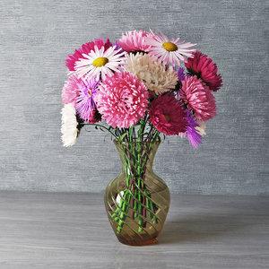 asters vase model