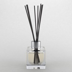 3D reed diffuser type3 model