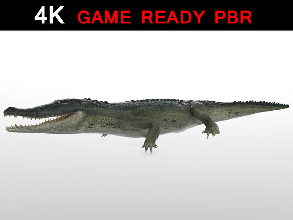 3d alligator reptile animation