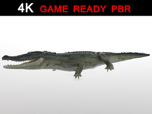 3d alligator reptile animation