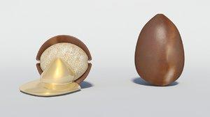 argan seed 3D