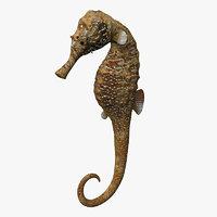 3d seahorse poser model