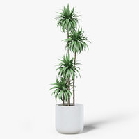 palm pot 3D