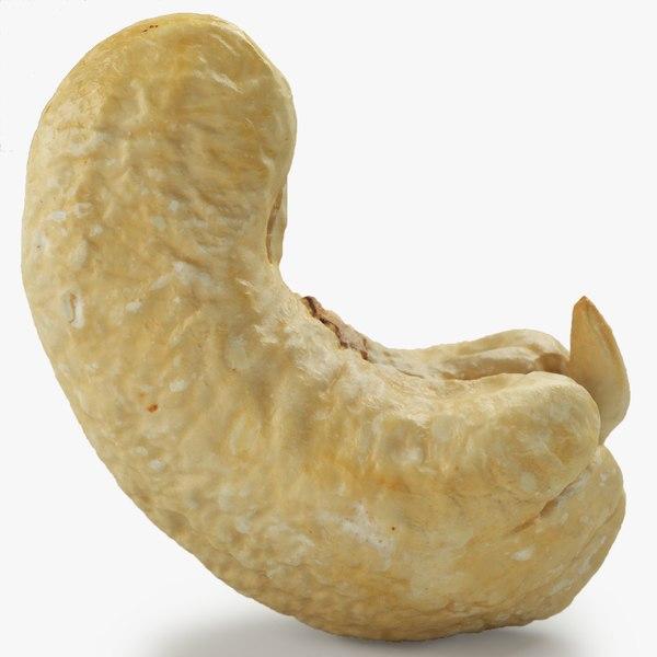 scan cashew model