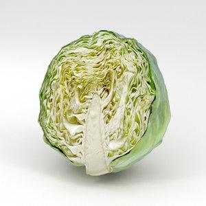 3D cabbage half model