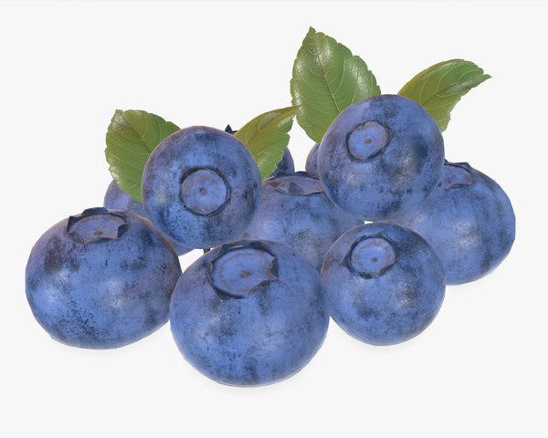 bluberries bilberry 3D model