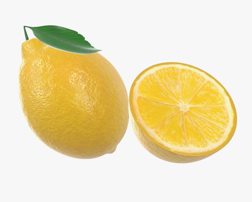 lemon leaf model