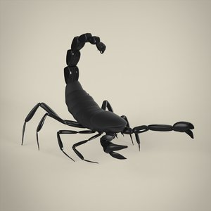 3D scorpion insect animal