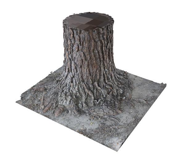 pine tree trunk bark 3D model