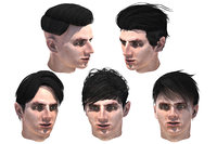 Set male hairstyle 5 types