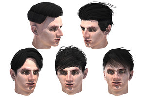 male hairs 5 types 3D
