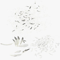 scattered feathers 3D