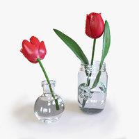 tulips pots 3D