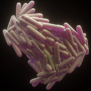 3D model mycobacterium tuberculosis