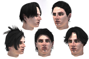 3D male hairstyles 5 species model