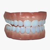 mouth modeled real realistic 3D