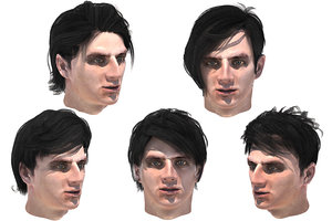3D male hairs 5 species model