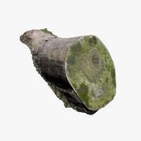 mossy log 3D model