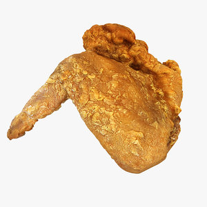 3D fried wing model