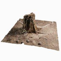 3D cedar tree stump