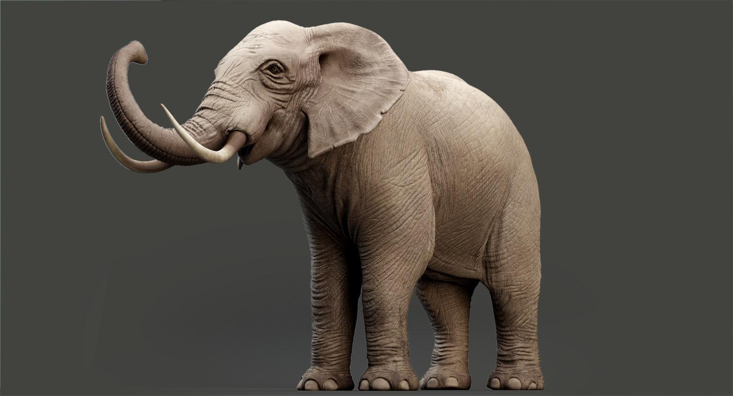 elephant modeled rigging animation 3D