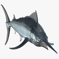black marlin 3D model
