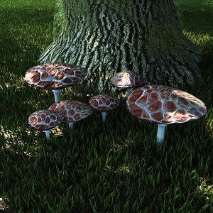 fungus set mushrooms 3D model