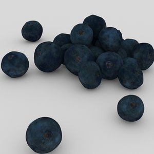 blueberry blue berry 3D model