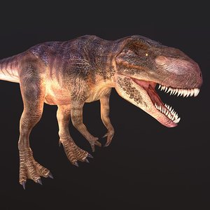 3D carnivore predator model