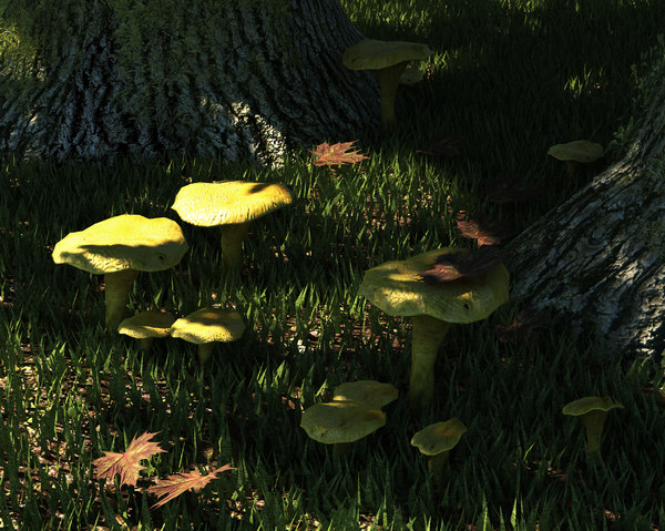 3D mushrooms set fungus