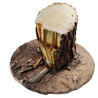 ponderosa tree stump model