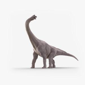 brachiosaurus dinosaur animate 3D model