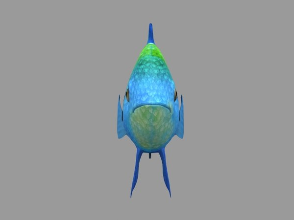 animations fish 3D