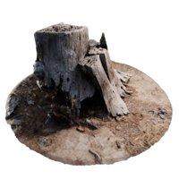rotten stump 3D model