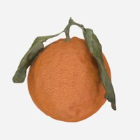 Orange with leaves 3d model