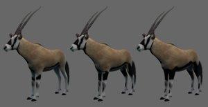 3D oryx gemsbok model