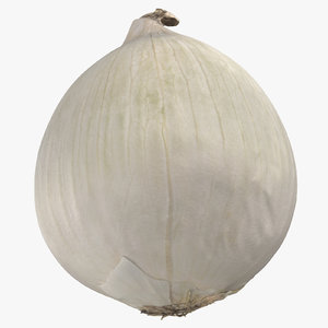 onion white 01 3D