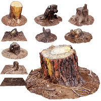scanned tree stumps pack 3D model