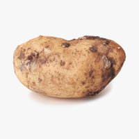 realistic potato 01 3D