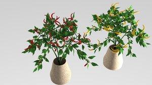 3D pepper plant