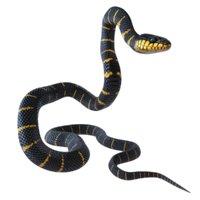3D mangrove snake reptile animation