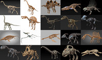 20 in1 Dino skeleton Collection