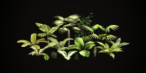3D model tropical vegetation pack